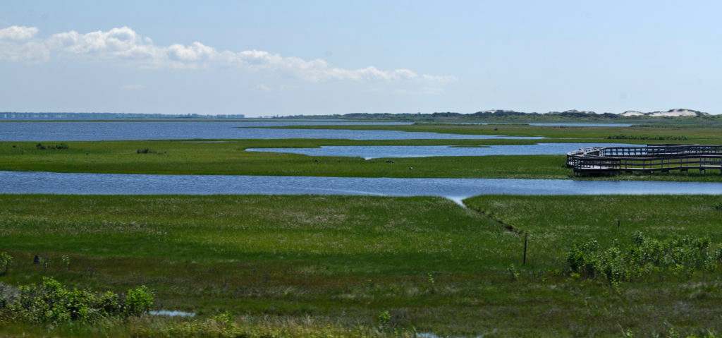 NPS/Fire Island National Seashore