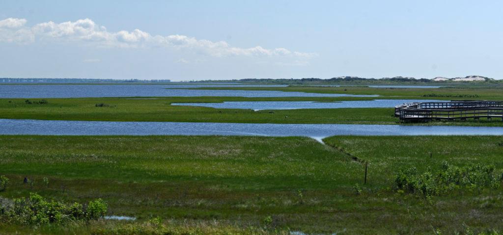 NPS/Fire Island National Seashore